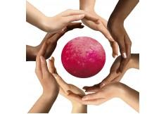 Współpracując z klientami, stawiamy na profesjonalizm i mistrzostwo działań.